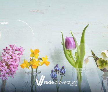 flores da estação